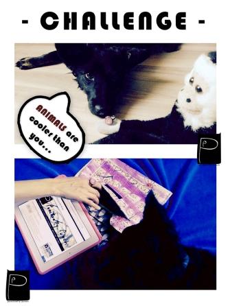 kutykutyi1_2016_09