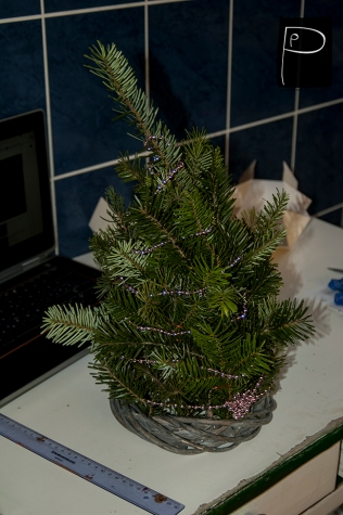 diy_xmastree